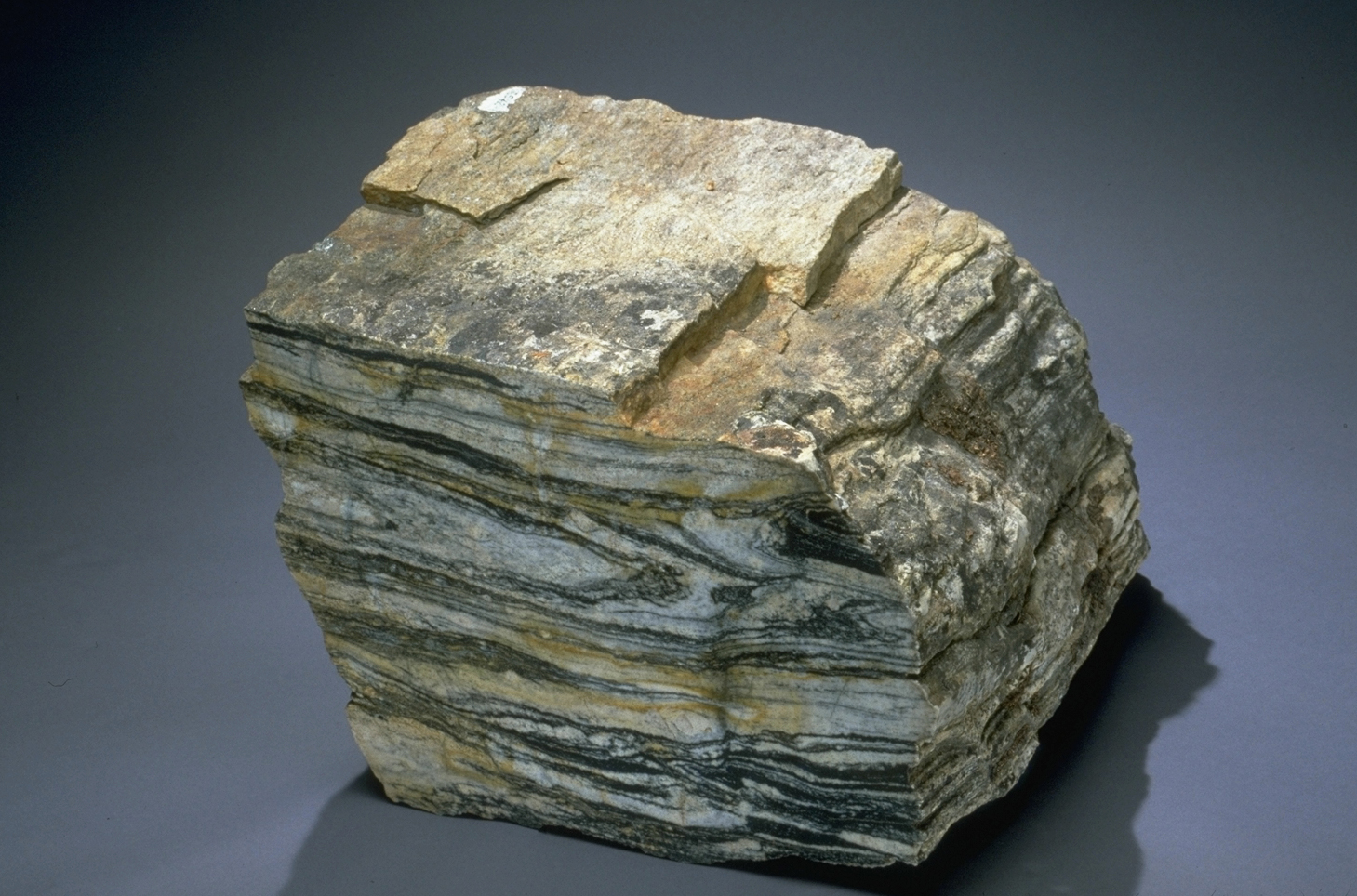 A banded tonalitic gneiss
