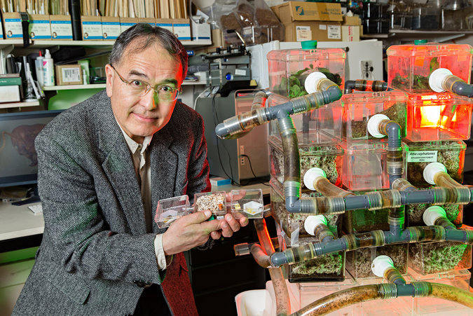 Entomologist Ted Schultz posing with the Ant Lab's leaf-cutting ant farm