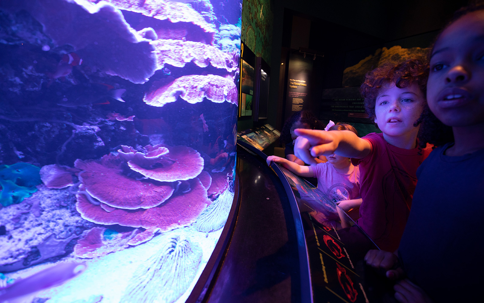 Two children in a dark exhibit hall looking at the coral reef fish tank which is right in front of them.