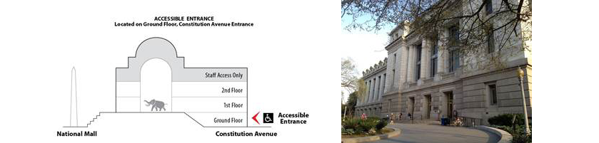 Diagram showing highlighting the accessible entrance on the ground floor, next to a photo of the entrance.