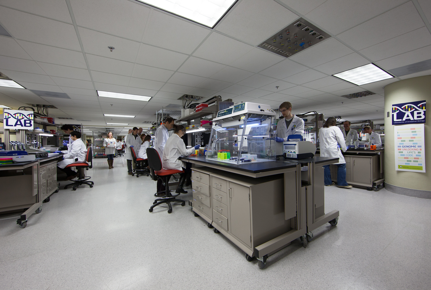 Photograph of scientists working in a LAB space